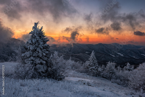 Fotografia Morning light on a frozen landscape, Appalachian Trail, Tennessee