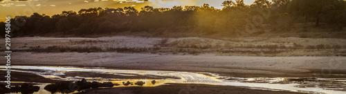 Staande foto Afrika Sunset in Letaba river landscape in Kruger National park, South Africa
