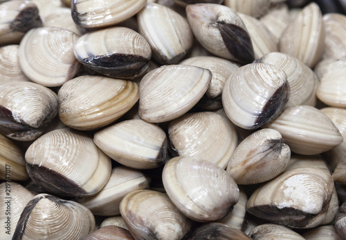 Photo Fresh clams in a market in Vietnam