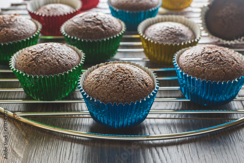 Baked chocolate cupcakes in gold, blue, and green foil liners for the holidays Canvas Print