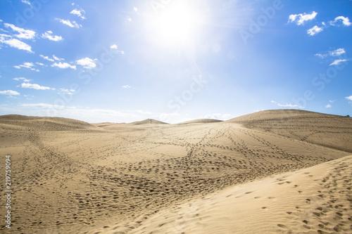 Foto op Canvas Droogte Maspalomas Sand Dune Desert, Grand Canaria