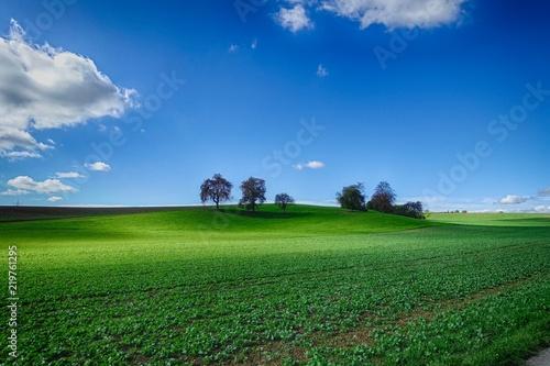Deurstickers Groene Idyllische Landschaft