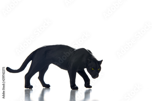 Foto op Canvas Panter Black panther portrait white background