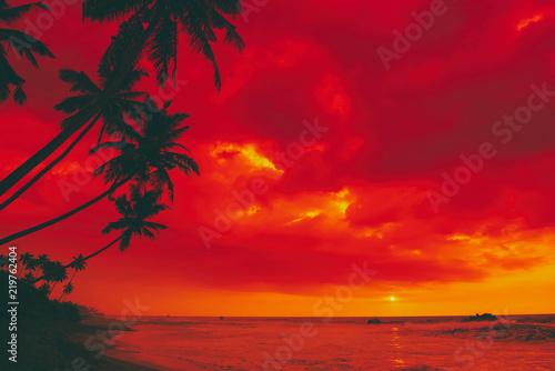Foto auf Leinwand Baume Tropical sunset island beach palm tree silhouettes