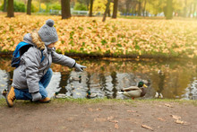 Schoolboy With Backpack Standing By Waterside And Pointing At One Of Ducks In Park
