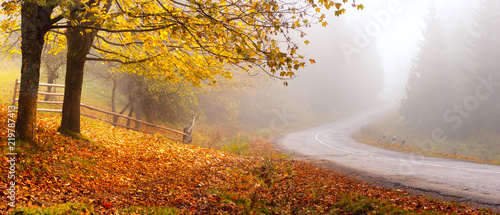 Tuinposter Herfst Autumn road