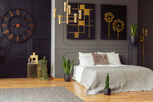 Real Photo Of A Spacious Bedroom Interior With Grey Walls, Clock, Paintings, Plants, Bed And Golden Accents