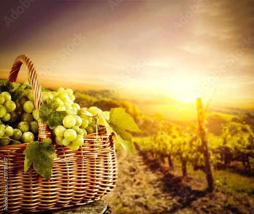 grapes-fruits-and-autumn-time