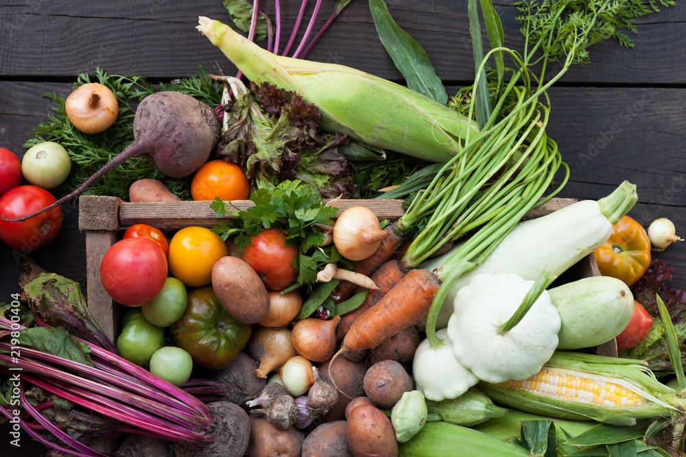 Nature vegetable organic harvest, fresh agriculture food.