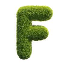 Grass Font 3d Rendering Letter F