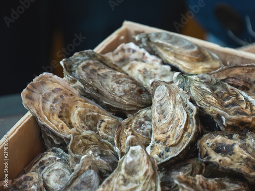 Oysters on the counter in wooden boxes on the market Slika na platnu