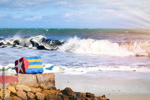 Poster Tunesië Stein mit aufgemalter Flagge liegt in Tunesien am Strand