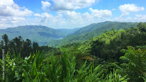 Cuba: beauty of tropical nature in the road leading to 'Topes de Collantes' (a n Fototapeta