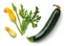 Green Zucchini With Leaf And F...