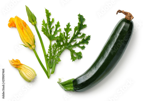 Green Zucchini with Leaf and Flower Isolated on White Background