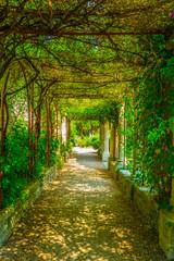 Panel Szklany Podświetlane Do przedpokoju View of a garden inside of the Fort Saint Andre in Villenueve les Avignon, France