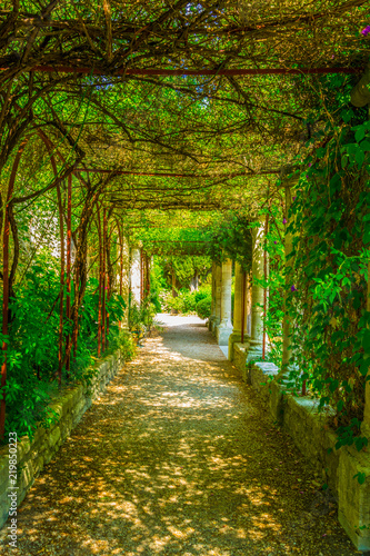 View of a garden inside of the Fort Saint Andre in Villenueve les Avignon, Franc Canvas Print
