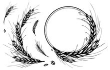 Rye, Barley Or Wheat Round Fra...