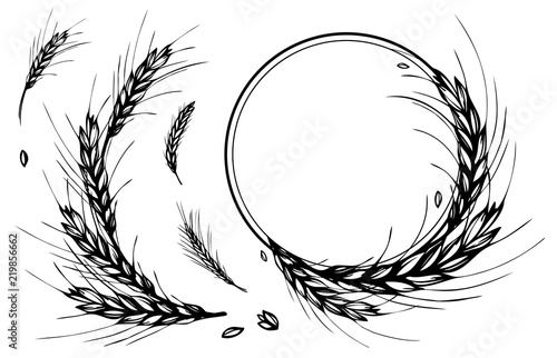 Photographie Rye, barley or wheat round frame or wreath on white background