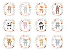 Vector Collection With Animals...