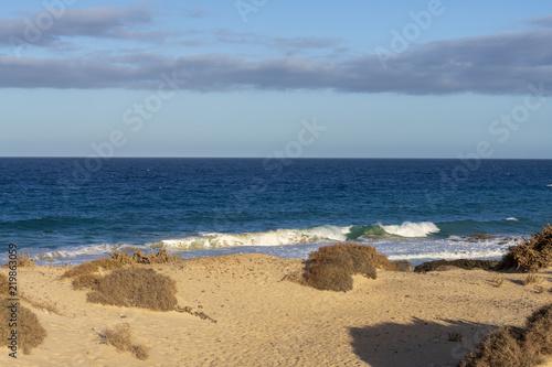 Deurstickers Canarische Eilanden Beautiful tropical sea view with sand beach. Tropical landscape. Ocean, sky, sea. Travel concept. Fuerteventura, Canary Islands, Spain