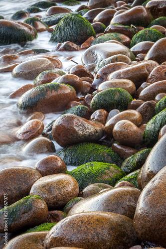 Fotografía  Wet pebbles on beach of Acadia National Park, Maine, USA