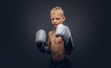 Young Shirtless Boy Boxer With Boxing Gloves Posing In A Studio.
