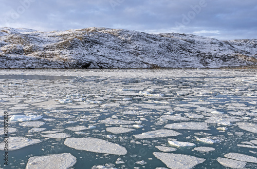 Foto op Plexiglas Arctica Sea Ice in a Glacial Bay