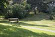 Africville Bench