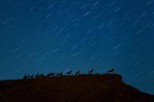 Vantage Horses Wild Monument A...