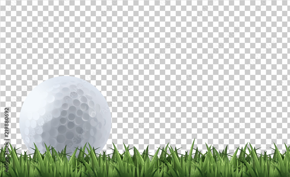 Fototapety, obrazy: Golf ball on grass