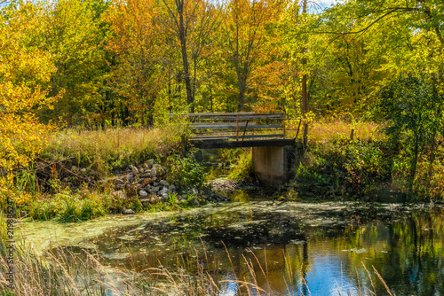 Foto op Canvas Herfst Autumn forest reflection landscape. Forest, pond, & foot bridge on a beautiful autumn day, full fall colors.