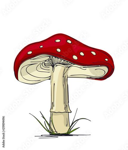 Mushroom amanita. Wallpaper Mural