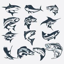 Set Of Sea Fish Vector Silhouette