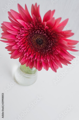 Staande foto Gerbera Gerbera daisy flower in the vase on the white table background.