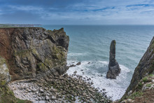Elegug Stack Rocks On The Pembrokeshire Coast In South Wales
