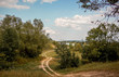 The winding dirt road between the trees. Autumn landscape with trees, road and blue sky with white clouds_