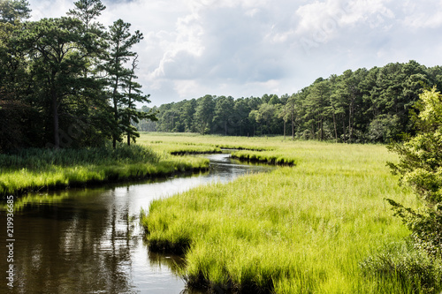 winding creek through salt marsh