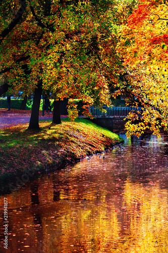 Autumn landscape. Golden autumn scene in a park with falling leaves. Colorful foliage.