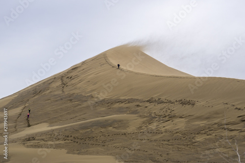 The golden dunes of the Singing Barkhan. National Nature Reserve Altyn-Emel, Kazakhstan