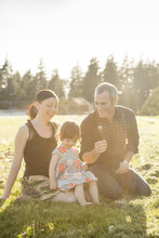 Adorable Family Portrait Of Mother, Father And Daughter Sitting In A Grassy Field Blowing Seeds From A Dandelion Seed Head At Sunset.