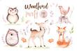 Leinwandbild Motiv Cute baby fox, deer animal nursery bird and bear isolated illustration for children. Watercolor boho forest drawing, watercolour, hedgehog image nursery posters