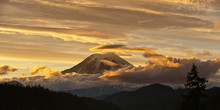 Mt Rainier At Sunset With Golden Clouds