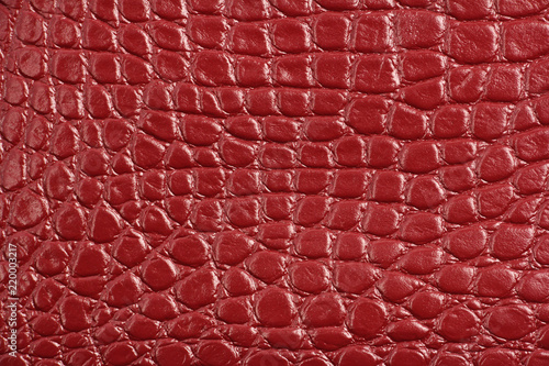 Poster Crocodile texture of red maroon genuine leather, like crocodile skin
