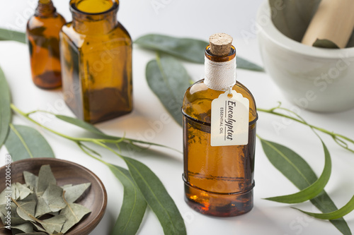 Fototapeta Eucalyptus essential oil. Aromatheraphy, wellness obraz