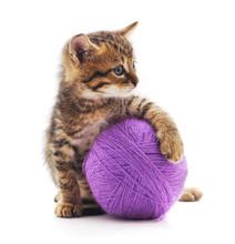 Kitten With A Ball.