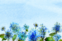 Blue Watercolor Ombre Wash Background Texture With Hydrangea Flowers