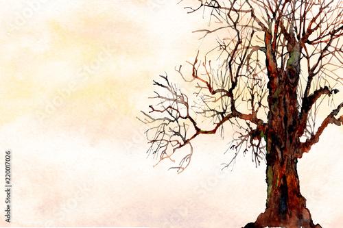akwarela-ombre-umyc-krajobraz-tekstury-tla-z-gole-drzewa