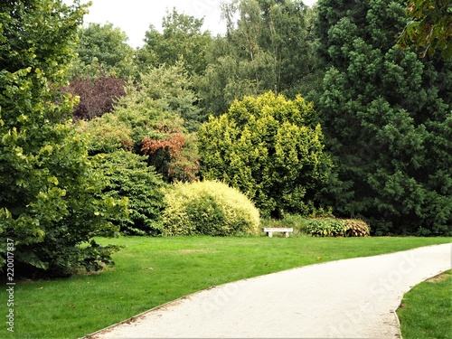 Colourful Shrubs And Trees In An English Garden In Summer Buy
