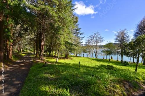 Papiers peints Jardin Azoren - Sao Miguel - Furnas-See Rundwanderweg